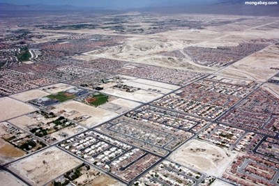Can America's Desert Cities Adapt Before...